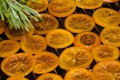 Getrocknete Orangen und Kiefernniederlassung stockfoto