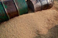 Getrocknete Paddyernte, die auf dem landwirtschaftlichen Gebiet legt lizenzfreie stockfotos