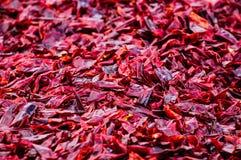 Getrocknete Paprikas für das Kochen Stockfotografie