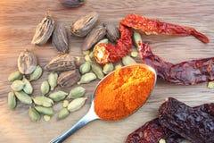 Getrocknete Paprikas und Kardamompflanzen Lizenzfreies Stockfoto