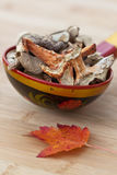 Getrocknete Pilze Stockfotografie