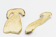Getrocknete Pilze Boletus reticulatus, Scheiben lizenzfreie stockfotografie