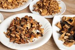 Getrocknete Pilze der unterschiedlichen Vielzahl Stockbild