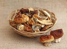Getrocknete Pilze im Weidenkorb Stockfoto