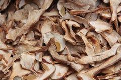 Getrocknete Porcini Pilze Lizenzfreie Stockbilder