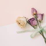 Getrocknete rosafarbene Blumen auf weißem rosa Hintergrund Stockfoto