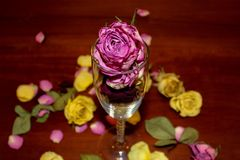Getrocknete rosafarbene Knospen im Glasmittelstück lizenzfreie stockbilder