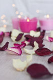 Getrocknete Rose Petals, Bokeh und Kerzen Lizenzfreie Stockfotografie