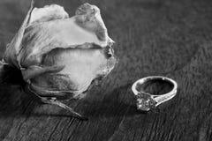 Getrocknete Rose und Diamant-Ring Stockfoto