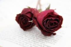Getrocknete Rosen auf einem Buch Lizenzfreies Stockfoto