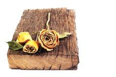 Getrocknete Rosen auf einem hölzernen alten Vorstand auf getrennter Rückseite Stockfoto