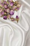 Getrocknete Rosen auf einem weißen Satin- oder Seidenhintergrund lizenzfreie stockfotografie