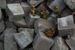 Getrocknete Rosen auf Stapel von Steinziegelsteinen Veterane, RISS, Rest im Friedenserinnerungskonzept stockfotografie