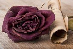Getrocknete Rosen und eine alte Rolle Lizenzfreie Stockfotos