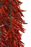 Getrocknete rote Paprikas Stockbild