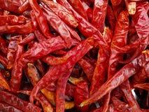 Getrocknete rote Paprikas Lizenzfreie Stockfotos