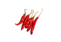 Getrocknete roter Paprika-Pfeffer Lizenzfreies Stockfoto