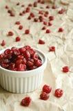 Getrocknete süße Kirschen im weißen Ramekin Lizenzfreies Stockfoto