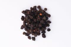 Getrocknete schisandra Früchte chinensis Stockfotografie