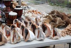 Getrocknete Starfish und Shells Lizenzfreie Stockfotos