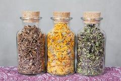 Getrocknete Teekräuter innerhalb der Glasflaschen Stockfotografie
