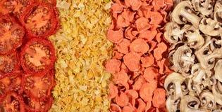 Getrocknete Tomaten, Karotten, Zwiebeln und Pilzhintergrund stockbild