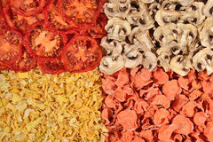 Getrocknete Tomaten, Karotten, Zwiebeln und Pilzhintergrund stockfotografie