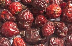 Getrocknete und gealterte Samen von Hagebutten Stockbilder