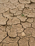 Getrocknete und gebrochene Erde lizenzfreies stockfoto