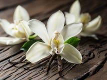 Getrocknete Vanillestöcke und Vanilleorchidee auf Holztisch lizenzfreie stockfotografie