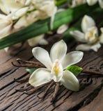 Getrocknete Vanillestöcke und Vanilleorchidee auf Holztisch lizenzfreies stockbild
