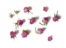 Getrocknete verblaßte Rosarosenköpfchen lokalisiert auf weißem Hintergrund mit Schatten Einklebebuch, Packpapier, Karte, Einladun Stockfoto