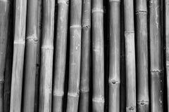 Getrockneter Bambuspfostenbeschaffenheitshintergrund Grauer Hintergrund f?r den Tod, traurig, ruhig, ruhig Bambuszaunentwurf der  lizenzfreies stockfoto