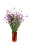 Getrockneter Blumenstrauß Stockbilder