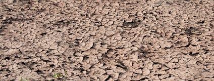 Getrockneter Boden mit Sprüngen Lizenzfreies Stockfoto
