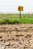 Getrockneter Boden und geblühtes Minenfeld Stockfotografie