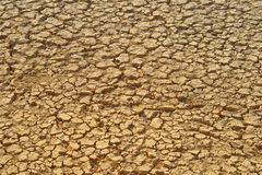 Getrockneter Fluss in Esfahan - dem Iran Lizenzfreie Stockfotografie