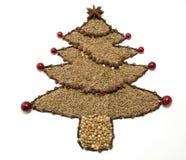 Getrockneter Gewürz-Weihnachtsbaum Stockfotos