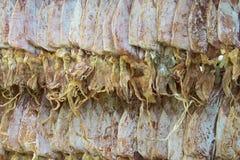 Getrockneter Kalmar für das Grillen stockbilder