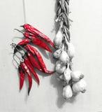 Getrockneter Knoblauch und Paprika in der Küche Stockfotografie