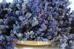 Getrockneter Lavendel Stockbild