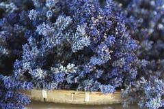Getrockneter Lavendel Stockfoto