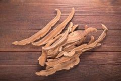 Getrockneter lingzhi Pilz u. x28; Auch genannt als Reishi-Pilz in Japan Stockbild