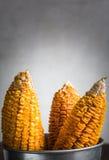 Getrockneter Mais-Stiel im Eimer lizenzfreie stockfotografie