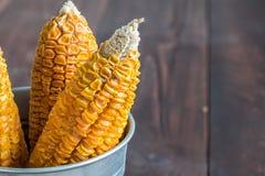 Getrockneter Mais-Stiel im Eimer lizenzfreie stockbilder