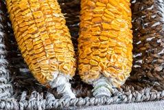 Getrockneter Mais-Stiel im Korb stockfotografie