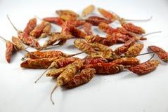 Getrockneter Paprika Lizenzfreies Stockbild