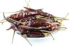 Getrockneter Paprika auf Weiß Stockbild