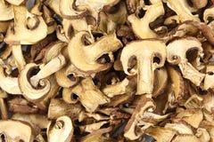 Getrockneter Pilz schneidet Lebensmittelhintergrundbeschaffenheit lizenzfreies stockfoto