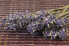 Getrocknetes Lavendelbündel Stockfotografie